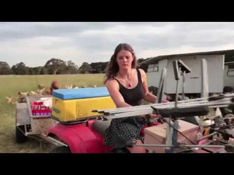 Madelaines Organic Eggs, Crowd Funding Video.