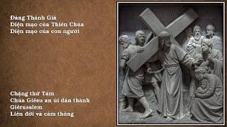 Chặng thứ Tám: Chúa Giêsu an ủi dân thành Giêrusalem - Liên đới và cảm thông
