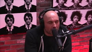 Joe Rogan Talks About Amy Schumer Stealing Jokes