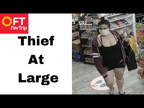 The Responsible Shoplifter