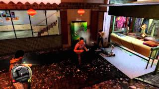 Sleeping Dogs - Stuntman and Environmentalist Guide