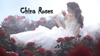 Enya * China Roses * Subtitulada Español & English Lyric (Beautiful)