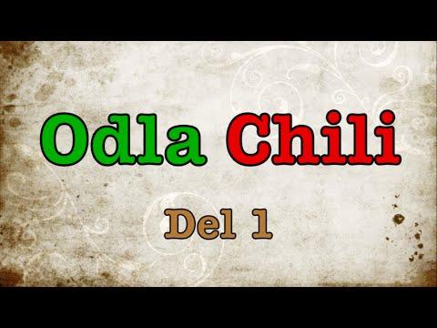 Odla Chili - Förbereda frön - Del 1