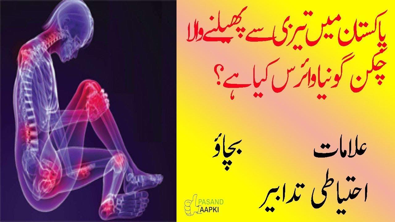 chikungunya aur dengue ky mutalaq mukammal tehqeq  in urdu with Dr Khurram : pasand aapki