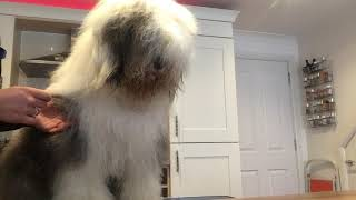 OES grooming tips