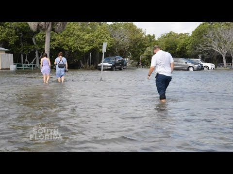 Planning for Rising Seas | Your South Florida