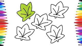 How to draw a leaf | Drawing and Coloring Leaves | Fall Season set Coloring Pages