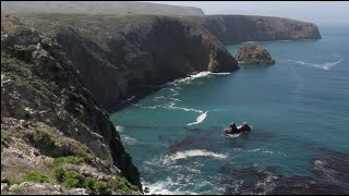 Adventure Kayaking Channel Islands National Park w/ B Corporation Channel Islands Outfitters
