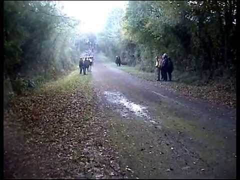 Cyclo-cross Cours-les-Barres 2004 Junior1