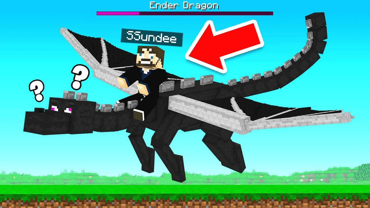 I KILL the ENDER DRAGON!