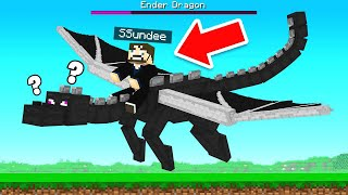 BEATING The ENDER DRAGON (Minecraft)