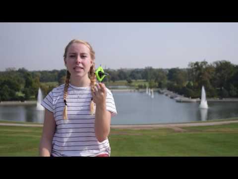 Emily Rapp, 17, United States: Semifinalist 2016 Breakthrough Junior Challenge