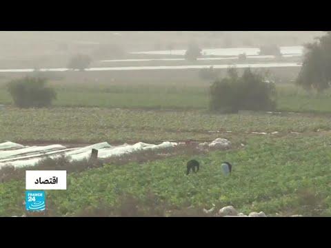 إسرائيل تضيق الخناق على المزارعين الفلسطينيين وتمنعهم من تصدير منتجاتهم  - 16:01-2020 / 2 / 11