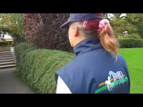 The Irish National Stud, Tuesday 10-October-2017, video 6
