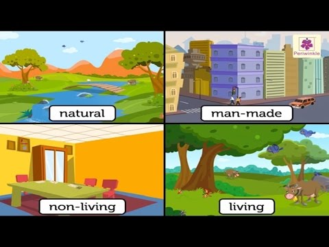 Natural And Man Made Things | Environmental Studies For Kids | Grade 3 | Vid #1