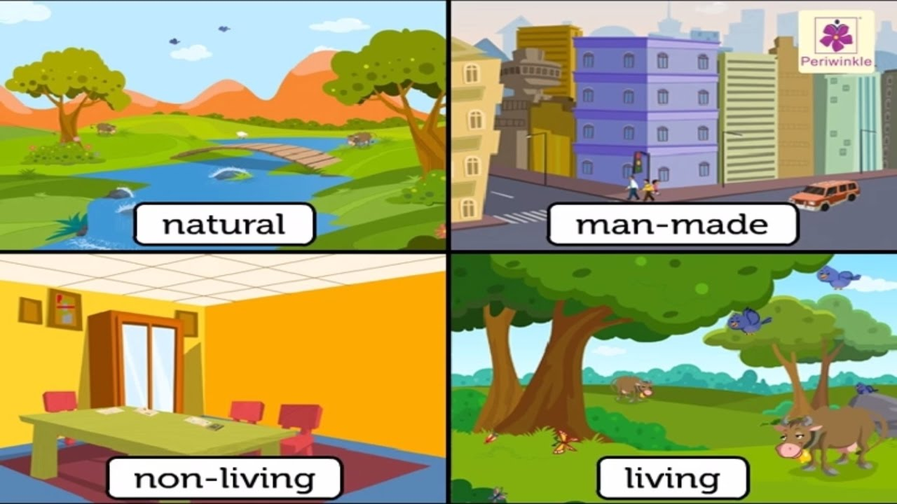 Natural Non Living Things Pictures on Needs And Characteristics Of Living Things 1