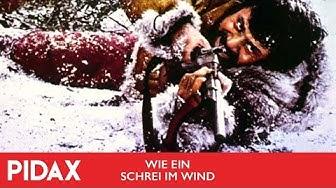 Wie Ein Schrei Im Wind Stream