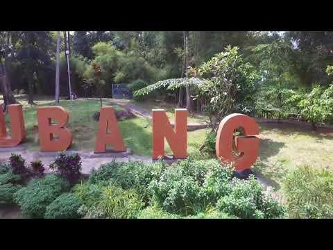 Subang Motekar (video  cover)