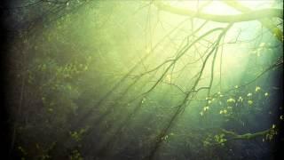 Vibrasphere feat. Ticon - Dewdrops [1080p HD]
