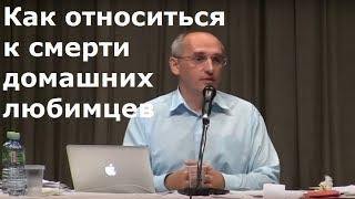 Торсунов О.Г.  Как относиться к cмерти домашних любимцев