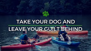 Happy Tails Tours - No Guilt if You Bring Your Dog on a tour