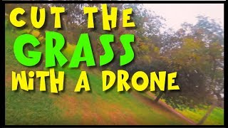 CUT the GRASS with a DRONE | FPV FreeStyle | BetaFlight 3.5.2