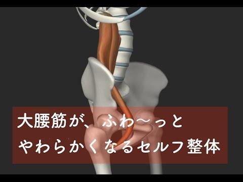 大腰筋(だいようきん)のセルフ整体(セルフミオンパシー)【腰痛のためのセルフ整体】