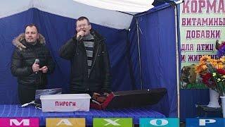 Выпуск 1. Песни 'Музыкант' и 'Родные края'