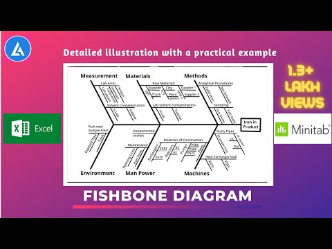 Fishbone Diagram: Practical Description With Examples