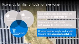 Enabling Familiar, Powerful Business Intelligence