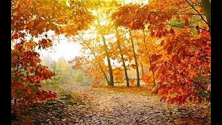 🔝 ХуДоЖнИкИ Картина маслом / Осенний пейзаж / Рисуем вместе с Татьяной Мацик