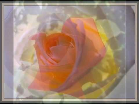 LeAnn Rimes - Some Say Love - The Rose