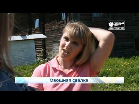 Луковая свалка  в деревне Петухи  Новости Кирова  29 05 2020