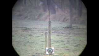 Benjamin Marauder .22  - 115 Yards - Scopecam