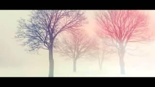 Hide and Seek by Imogen Heap Lyrics