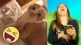 Попробуй не засмеяться челлендж / Реакция на смешное видео 2