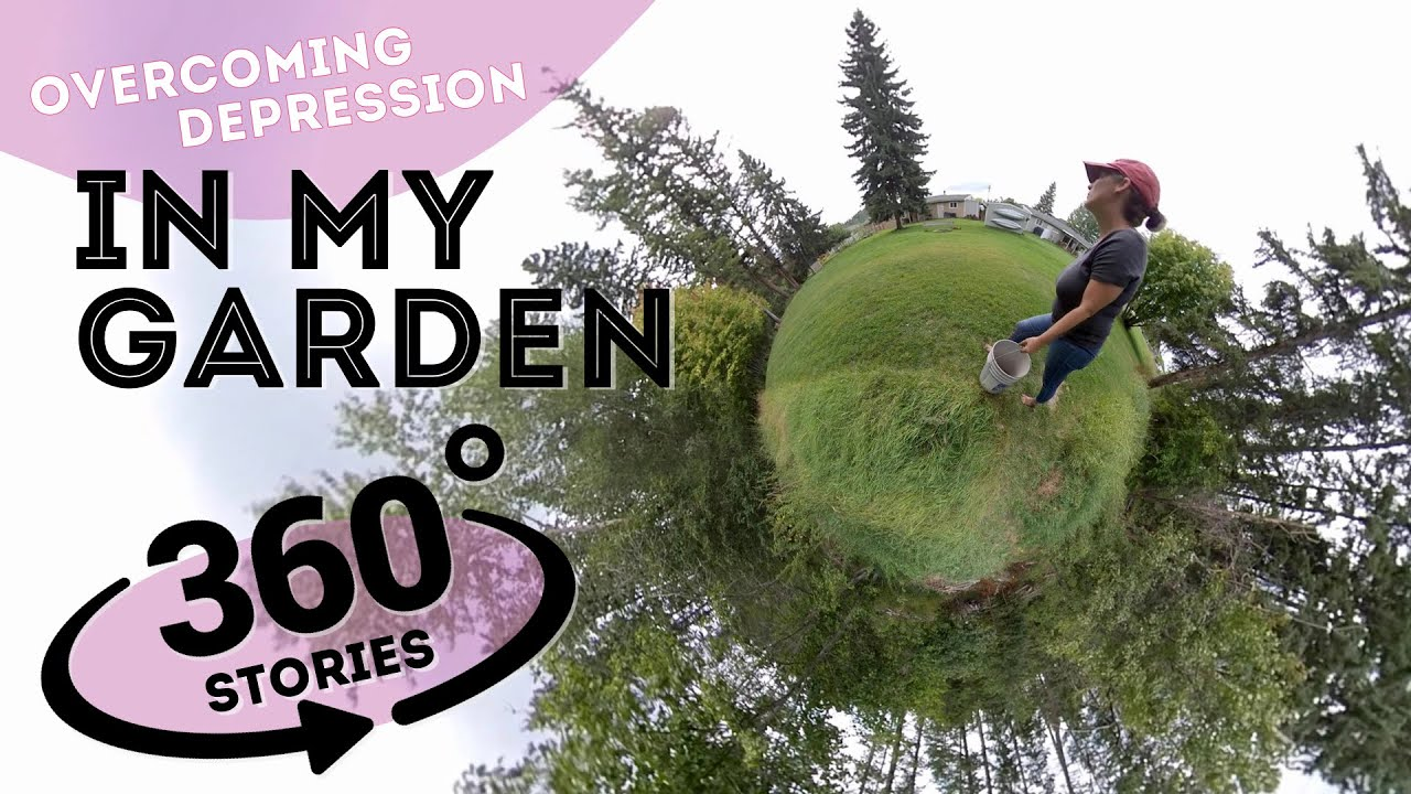 In My Garden  |  360° stories