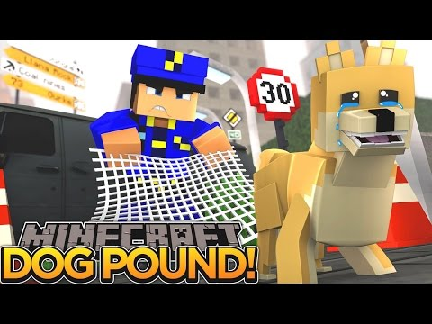 DOG POUND, PUPPY ALEX IS TRAPPED!! - Minecraft - Little Donny Adventures.