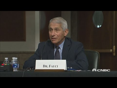Watch as Anthony Fauci hits back at Rand Paul over herd immunity ...