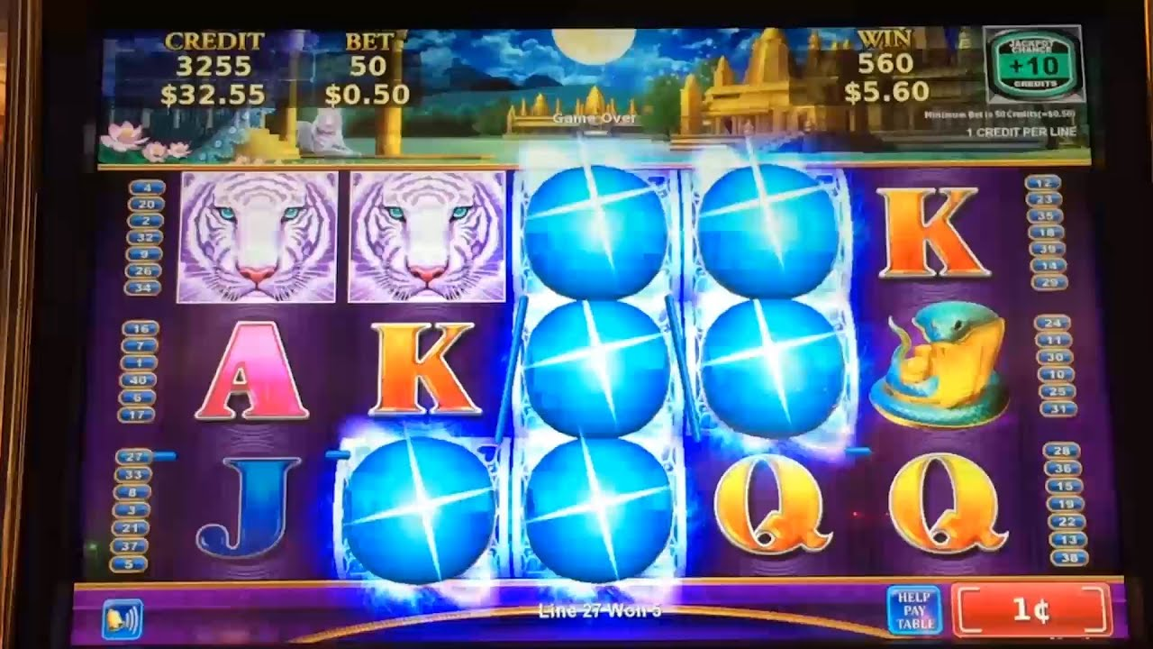 Lotus land slot machine tailgate party free slots