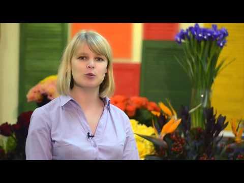 Send flowers to Odessa UA Flowers com