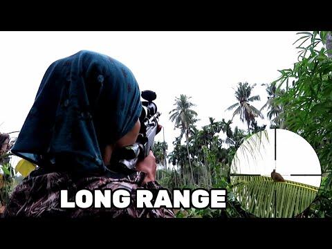 APA YANG TERJADI SHOT TERLALU JAUH ( HUNTING TERKUKUR)