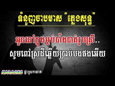 ទំនួញចាបមាស ភ្លេងសុទ្ធ ឯក ស៊ីដេ ,TOM NOUNH CHAB MEAS  , Video Khmer for sing