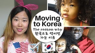 MOVING BACK TO KOREA. THE REASON WHY. 미국에서 한국으로 역이민 가는 이유 (영주권까지 따고 역이민) Vlog ep. 155