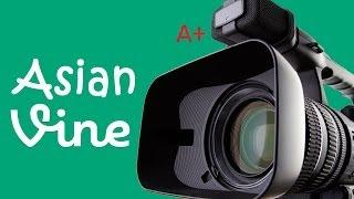 Best Asian Vines Video Compilation!
