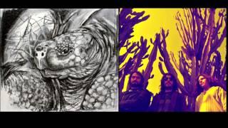 Tortuga - Las estrellas y los planetas (Heavy rock from Peru)
