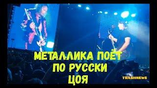 Группа Metallica на концерте в «Лужниках» спела песню Виктора Цоя «Группа крови».