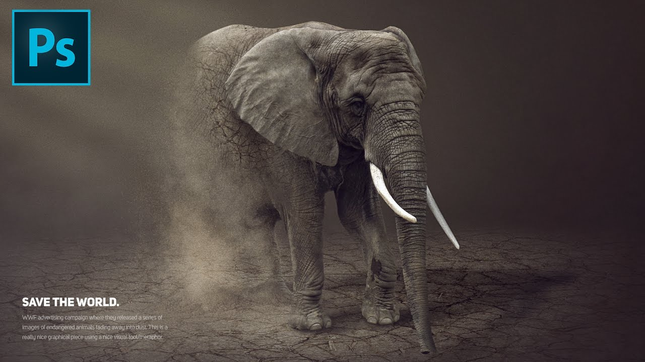 photo manipulation tutorial how to make a vanishing elephant  photo manipulation tutorial how to make a vanishing elephant advertising poster in photoshop cc