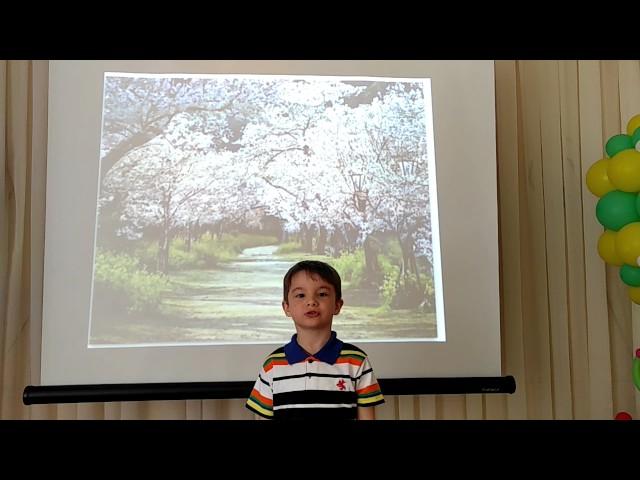 Изображение предпросмотра прочтения – ДаниилЕгоров читает отрывок изпроизведения «Зеленый шум» Н.А.Некрасова
