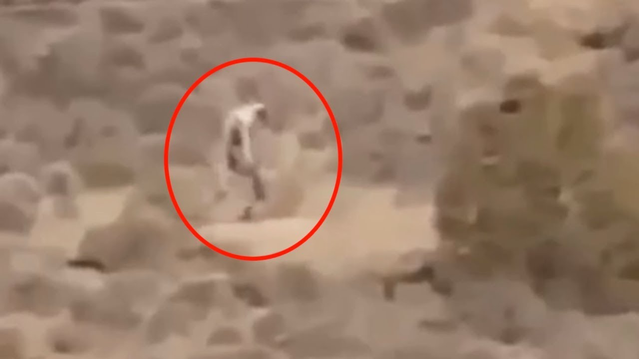 5 Mysterious Creatures Caught On Camera Spotted In Real